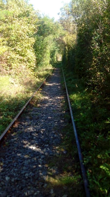 Img. 1 - Tunelul Dragostei